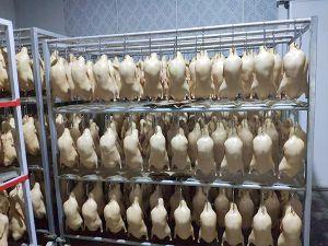 四系鸭胚的加工过程您了解过吗